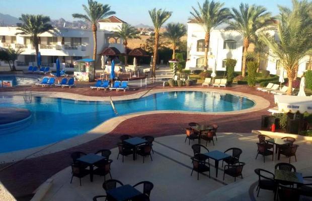 фотографии Viva Sharm (ex. Top Choice Viva Sharm; Falcon Inn ViVa Resort; Grand Viva Sharm) изображение №4