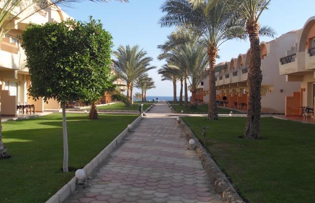 фотографии The Three Corners Sea Beach Resort (ex. Triton Sea Beach Resort; Holiday Beach Resort Marsa Alam) изображение №24