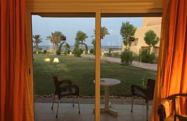 фотографии отеля Wadi Lahmy Azur изображение №19
