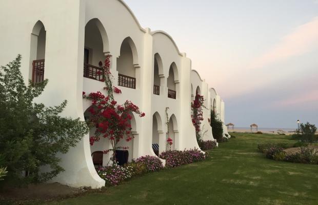 фотографии Gorgonia Beach Resort изображение №20