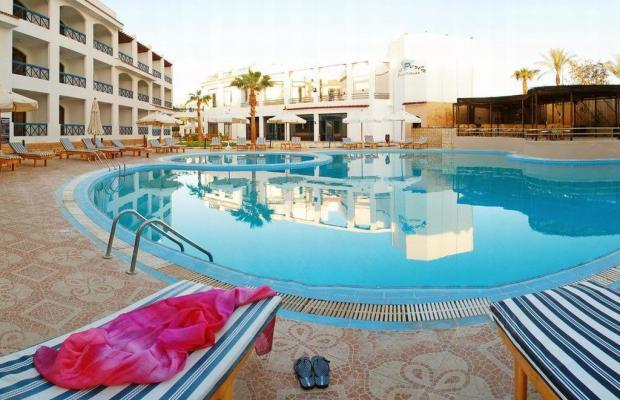фотографии New La Perla Hotel (ex. La Perla Sharm El Sheikh) изображение №12