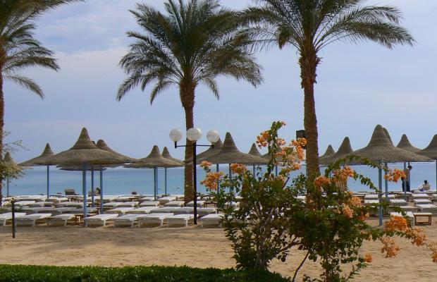 фотографии отеля Marlin Inn Beach Resort  (ex. Dessole Marlin Inn Beach Resort) изображение №19