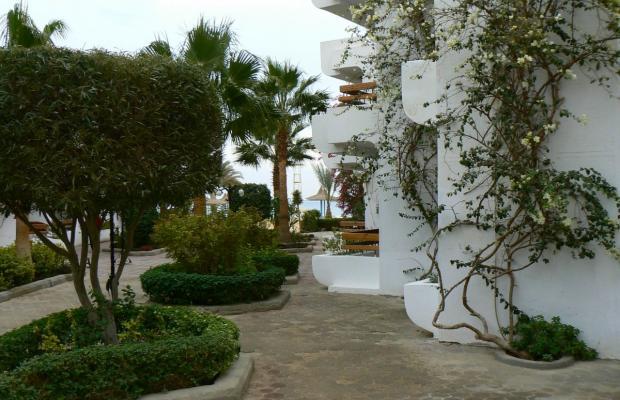 фото Marlin Inn Beach Resort  (ex. Dessole Marlin Inn Beach Resort) изображение №18