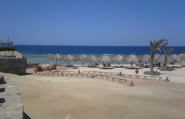 фотографии Zabargad Beach Resort изображение №24