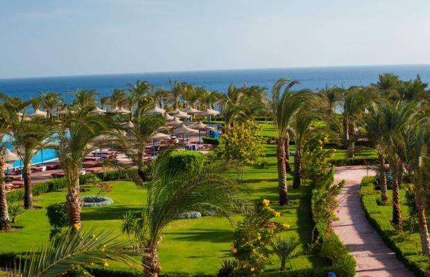 фото отеля Fantazia Resort Marsa Alam (ex.Shores Fantazia Resort Marsa Alam) изображение №45