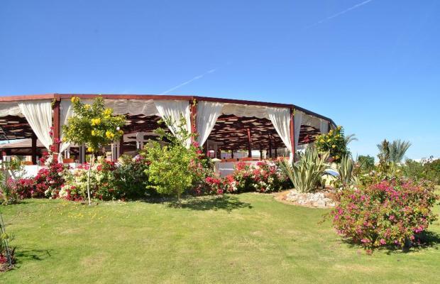 фотографии Fantazia Resort Marsa Alam (ex.Shores Fantazia Resort Marsa Alam) изображение №16