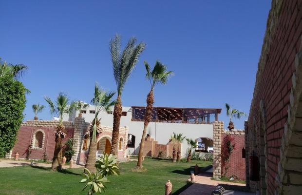 фото отеля Aladdin Beach Resort (ex. Dessole Aladdin Beach Resort) изображение №13