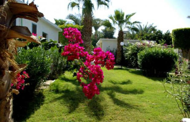 фото отеля El Samaka Desert Inn изображение №5
