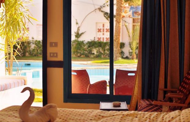 фотографии отеля Ocean Club Red Sea Hotel изображение №11
