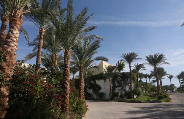 фотографии отеля Dessole Royal Rojana Resort изображение №19