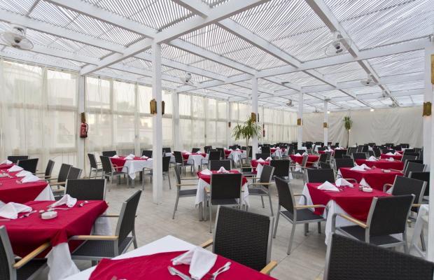 фотографии отеля Shores Aloha Resort (Ex. Otium Hotel Aloha Sharm; Aloha Club & Resort) изображение №11