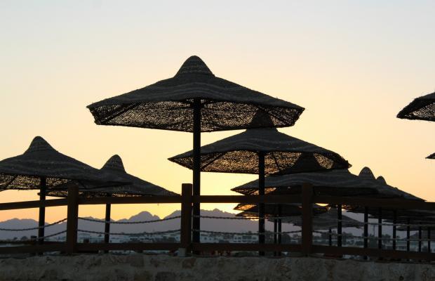 фотографии отеля Sharm Resort (ex. Crowne Plaza Resort) изображение №7