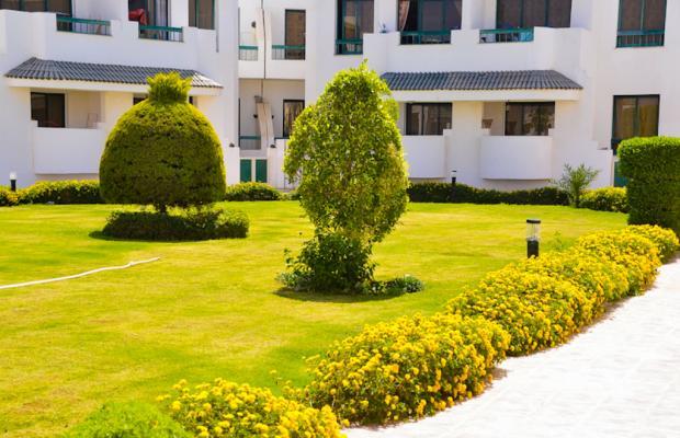 фотографии отеля Sunshine Resort изображение №11