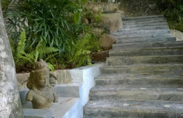 фотографии Thambapanni Retreat изображение №12