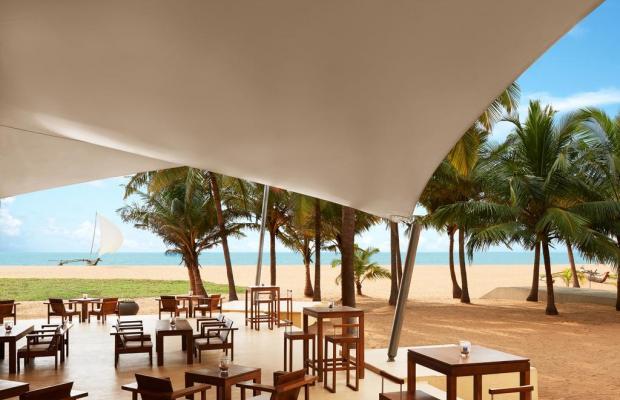 фотографии отеля Jetwing Beach (ex. Royal Oceanic; The Beach) изображение №3