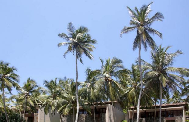 фотографии отеля Amanwella изображение №3