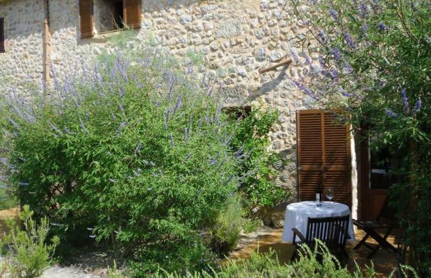 фотографии Finca Hotel Son Olive изображение №8