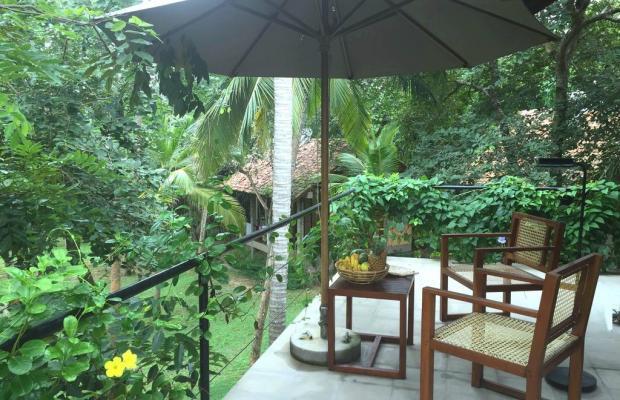 фото отеля Palm Paradise Cabanas изображение №9
