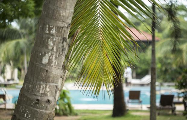 фото Portofino Resort Tangalle (ex. Ranna 212) изображение №18