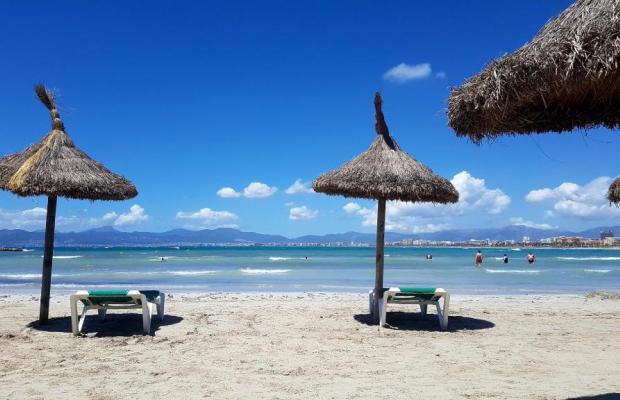 фото Ipanema Park- Beach изображение №22