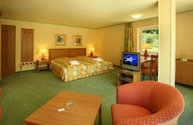 фотографии отеля IFA Alpenhof Wildental Hotel изображение №3