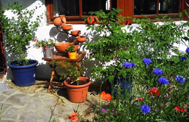 фотографии Haus Sonnenschein изображение №12