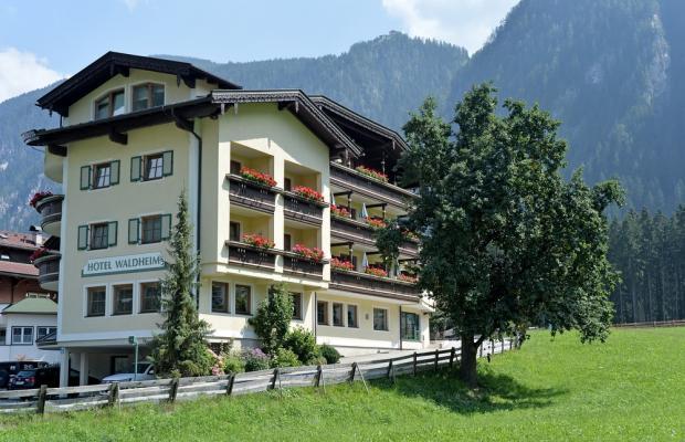 фотографии отеля Waldheim изображение №3