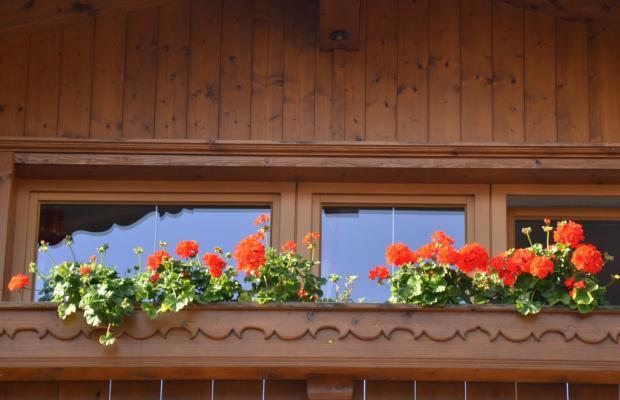 фото Haus Julia изображение №6