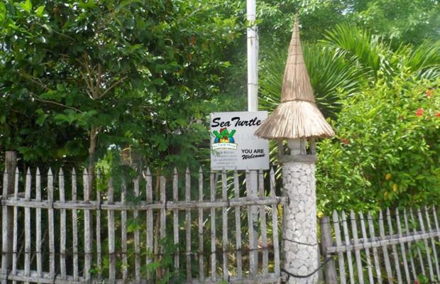 фотографии отеля Sea Turtle House изображение №19