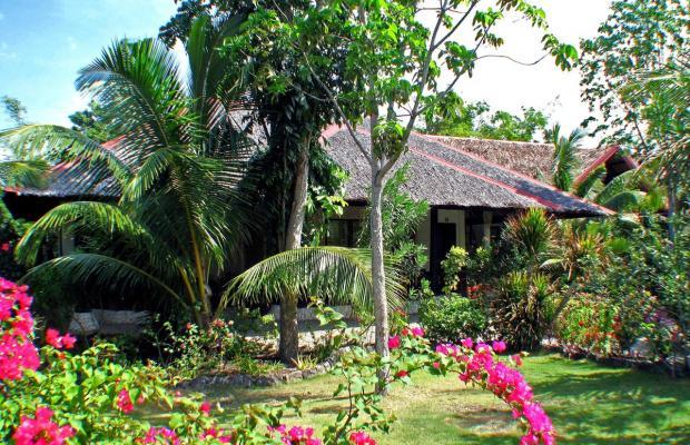 фото отеля Dolphin House Resort Moalboal изображение №21