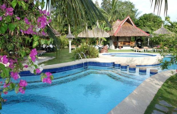 фотографии Dolphin House Resort Moalboal изображение №16