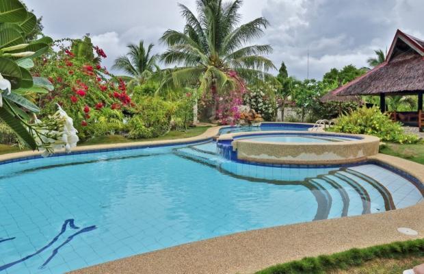 фотографии Dolphin House Resort Moalboal изображение №8