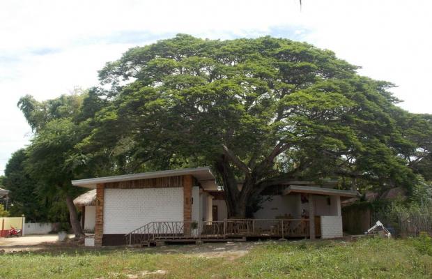 фото Dormitels Bohol изображение №30