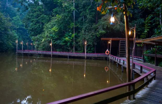 фото Borneo Tropical Rainforest изображение №6
