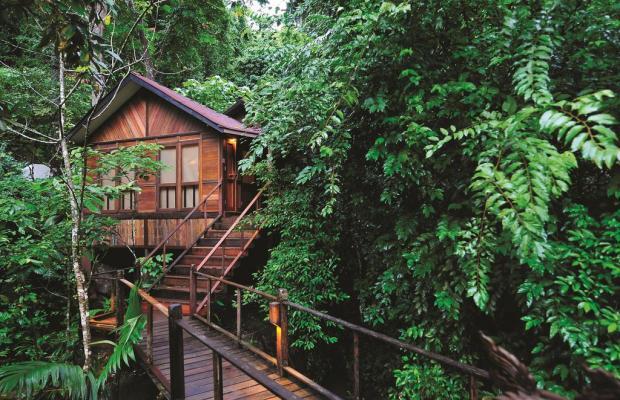 фотографии отеля Japamala Resort изображение №35