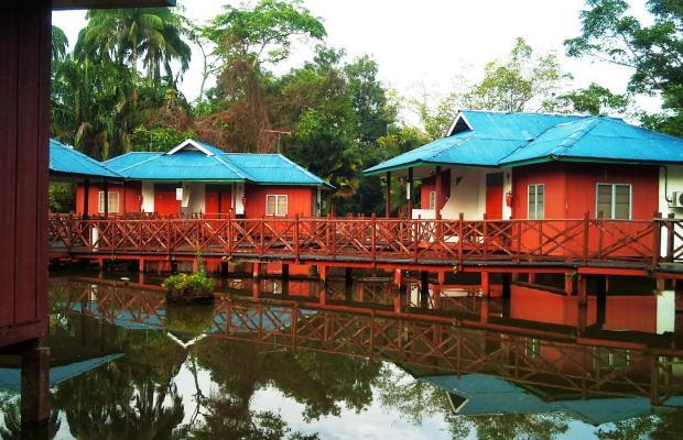 фотографии отеля Firefly Park Resort изображение №7