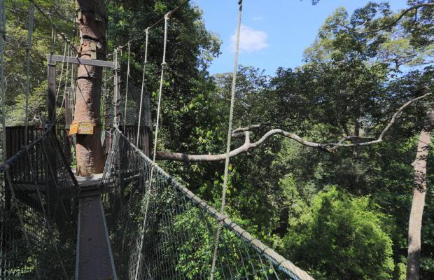 фото отеля Mutiara Taman Negara Resort изображение №21