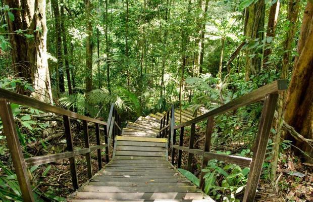 фото Mutiara Taman Negara Resort изображение №10