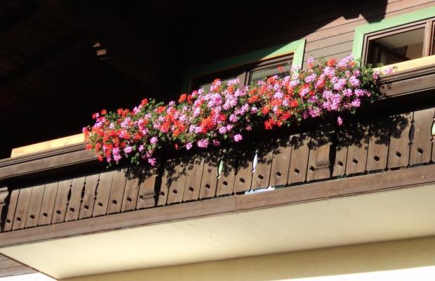 фото отеля Apartmenthaus Gotthard изображение №17
