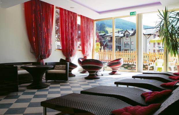 фотографии отеля Berger's Sporthotel изображение №3