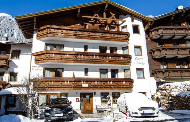 фотографии отеля Garni Alplig изображение №7