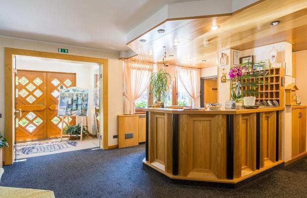 фотографии отеля Hotel Alpina изображение №35
