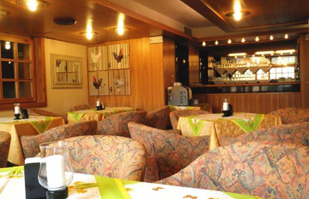 фотографии R.T.A. Hotel des Alpes 2 изображение №8