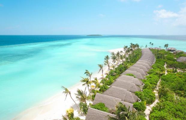 фотографии отеля Dhigufaru Island Resort изображение №15