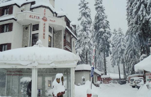 фото Альпин (Alpin) изображение №46
