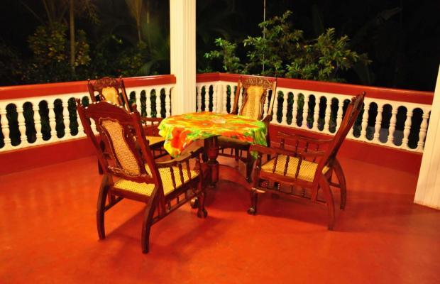 фотографии отеля Polina Resort изображение №11