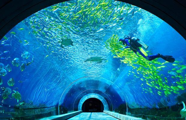 фотографии InterContinental Sanya Haitang Bay Resort  изображение №16