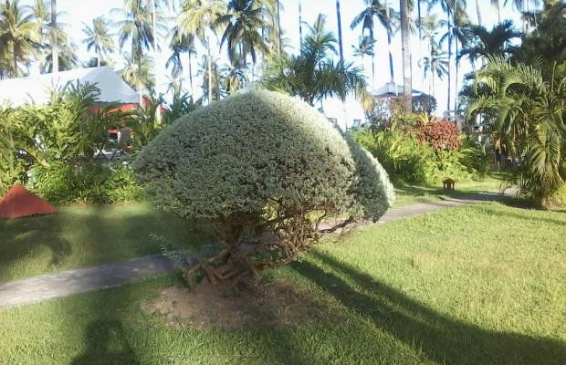 фото Bahura Resort & Spa изображение №2
