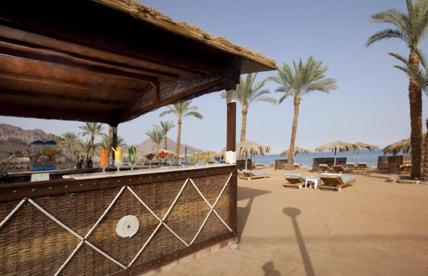 фотографии отеля La Playa Beach Resort Taba (ex. Sol Taba Red Sea; Sonesta Beach Resort Taba) изображение №31