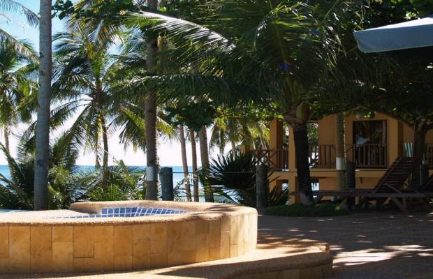 фотографии Anda White Beach изображение №24